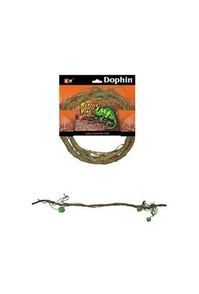 Dophin Sürüngen Aksesuar Sarmaşık S 200-05467
