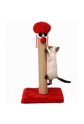 Kedi Tırmalama Palyaço