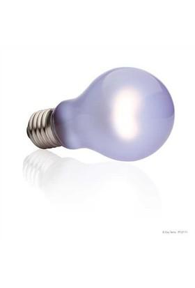 Exo Terra Day Glo Bulb 100 W Küçük