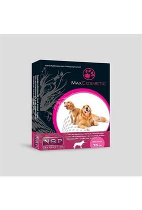 Max Cosmetic Parfümlü Büyük Köpek Tasması 75Cm