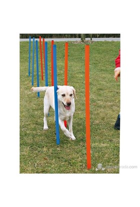 Trixie Köpek Agility Eğitim Direkleri,12ad,115×ø3cm.