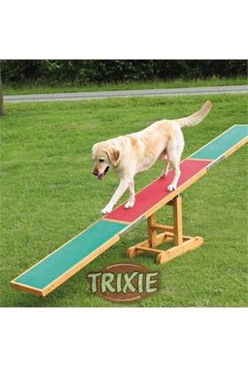 Trixie Köpek Agility Eğitim Tahterevalli 300×54×34cm