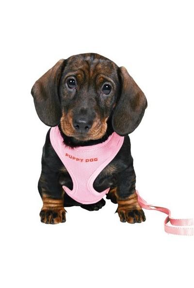 Puppy yumuşak göğüs tasma ve kayışı, 23-34cm/2m/10mm Pembe