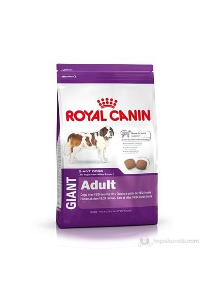 Royal Canin Giant Adult Dev Irk +45 Yetişkin Köpek Maması 15 Kg