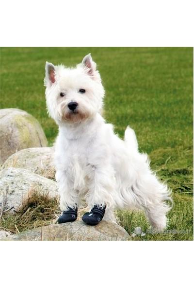 Trixie Köpek Botu Small Siyah 2 Adet Yorkshare,Terrier