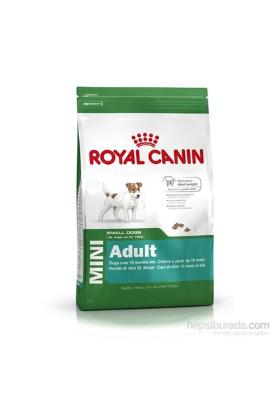 Royal Canin Shn Mini Adult Yetişkin Küçük Irk Köpek Maması 2 Kg