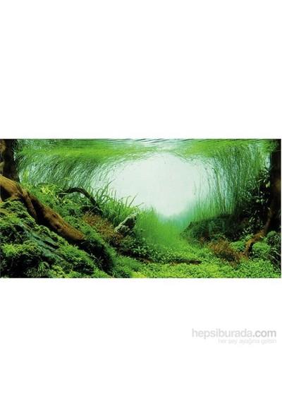 Trixie Akvaryum Çift Taraflı Arka Planı 120x50cm