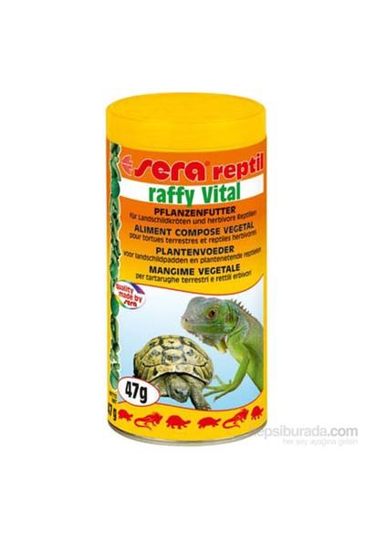 Sera Raffy Vital Kaplumbağa Yemi 250 Ml