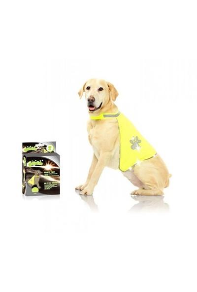 12001 Pawise Safety Vest Köpek Yeleği S