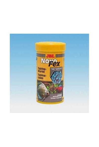 Jbl Novofex Rote Mückenlarven Sivrisinek Larvası Blood Worms Kan Kurdu 100