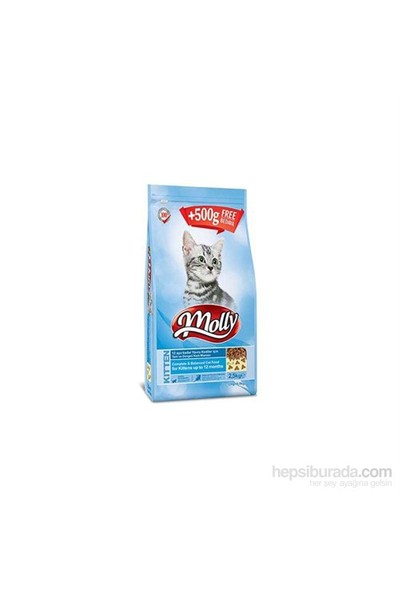 Molly Yavru Kedi Maması 2 Kg + 500 Gr Hediyeli