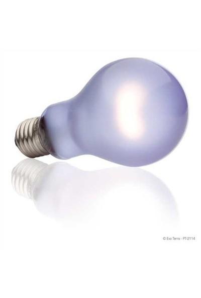 Exo Terra Day Glo Bulb 150 W