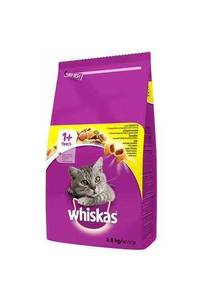 Whiskas Tavuklu Kuru Kedi Maması 3,8 Kg