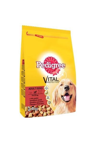 Pedigree Kuru Erişkin Biftek&Kümes Hayvanı Kuru Köpek Maması 2,6 Kg