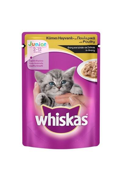 Whiskas Pouch Yavru Kümes Hayvanı 100 gr