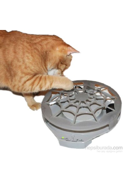 Kedi Aktivite Oyuncağı