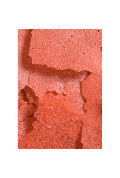 Ocean Nutrition Prime Reef Flake - 34 Gr. Deniz Balıkları için Yüksek Proteinli Pul Yem