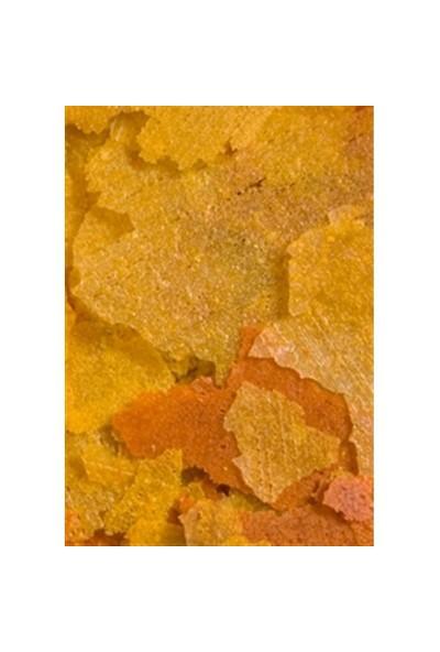 Ocean Nutrition Goldfish Flake - 34 Gr. Japon Balıkları için Pul Yem