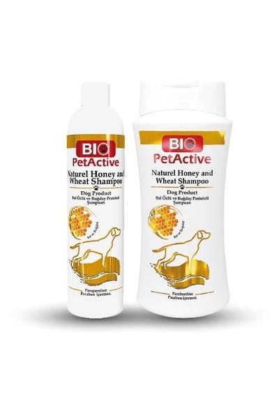 Biopetactive Natural Honey Shampoo- (Doğal Bal Özlü Köpek Şampuan) 400 Ml