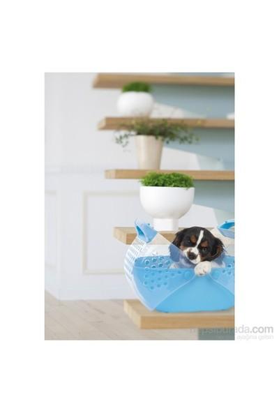 Imac Baggy Kedi Köpek Küçük Boy Taşıma Çantası 36*25*29