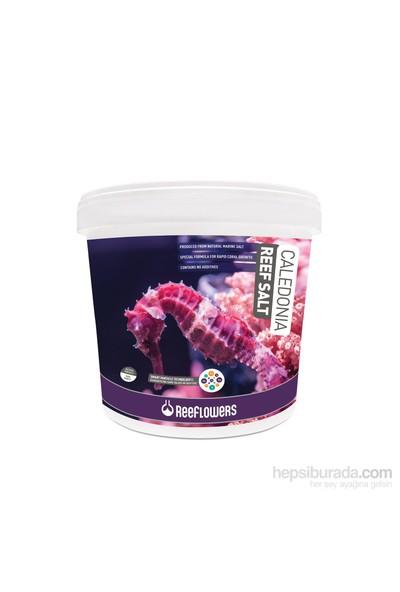 Reeflowers Caledonia Reef Salt 22,5 Kg