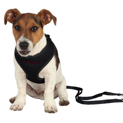 Trixie Yavru Köpek Göğ.Tasma&Kyışı,33-47Cm/2M/10Mm