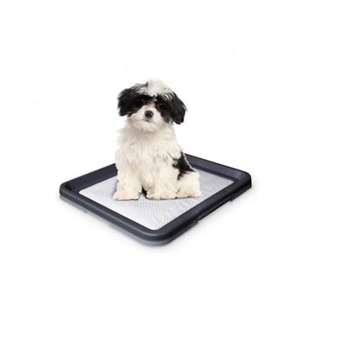 Nobby Köpek Tuvalet Eğitimi Seyyar Tuvaleti 48 X 41 X 3.5 Cm