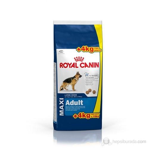 Royal Canin Maxi Adult Köpek Maması 15 Kg + 4 Kg