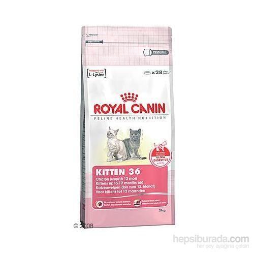 Royal Canin Fhn Kitten 36 Yavru Kedi Maması 10 Kg