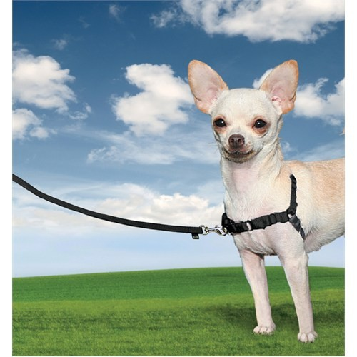 Easy Walk™ Harness - Extra Small Siyah Köpek Tasması