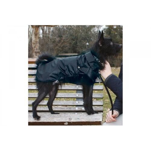 Köpek Yağmurluk (Montreal) 65 Cm