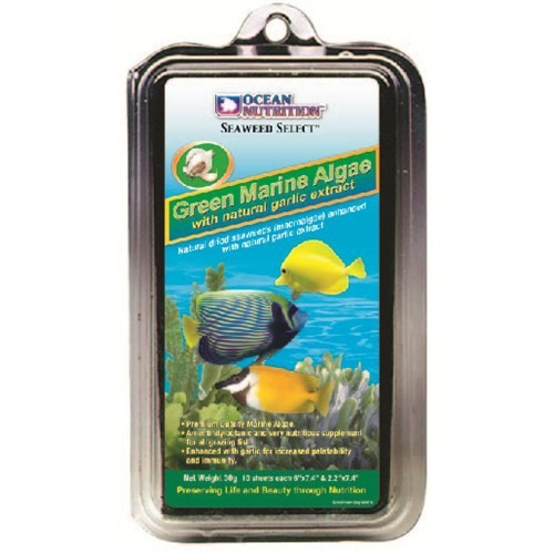 Ocean Nutritiong Green Marine Algae - 12 Gr. Sarımsak Katkılı Deniz Yosunu