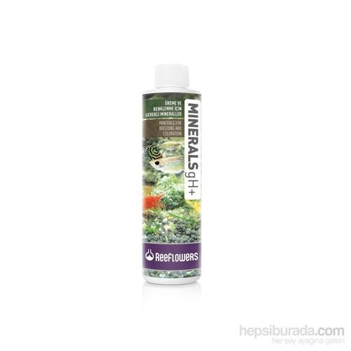 Reeflowers Minerals gH+ 500 ml