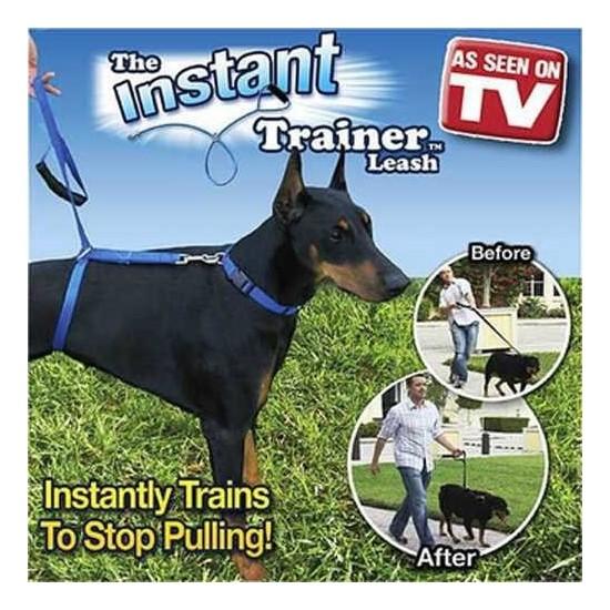Uygun Köpek Eğitim Tasması Instant Trainer Leasha