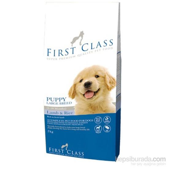 FirstClass Adult Large Lamb Rice Kuzulu Büyük ırk Yavru Köpek Maması 2 Kg