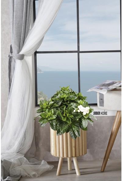 Saber Ahşap Yuvarlak Dekoratif Saksı Balkon Bahçe Ofis Salon Saksısı