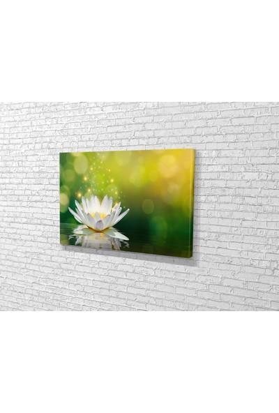 Tablo 360 Beyaz Lotus Kanvas Tablo