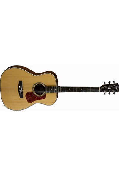 Cort L100CNS Akustik Gitar