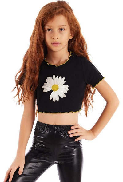Colorinas Trim Crop Tshirt