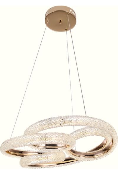 Luna Lighting Modern Gold Sarı LED Avize 55 Dido Ledli Sarkıt Avize