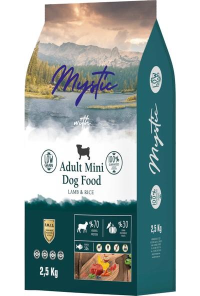 My Stil Mystic Az Tahıl Yetişkin Köp.mini Orta Kuzu 2,5 kg