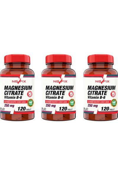 Magnesıum Cıtrate Vitamin B-6 (3 Kutu) 120 Tablet