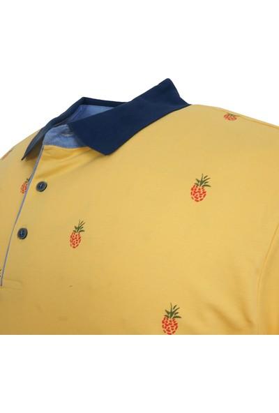 Rugatchi Erkek Büyük Battal Boy Polo Yaka Tişört