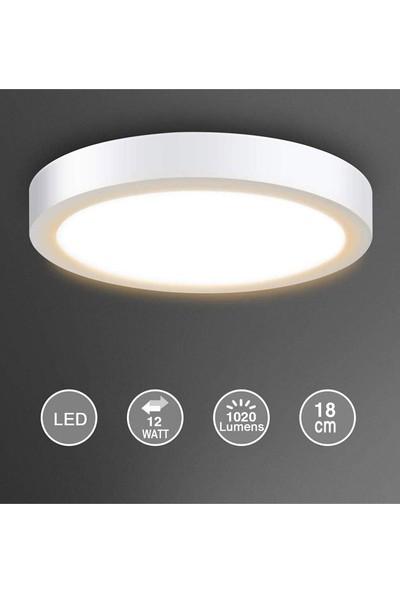 Infoled 12W LED Sıva Üstü Yuvarlak Model Panel Armatür Beyaz Işık
