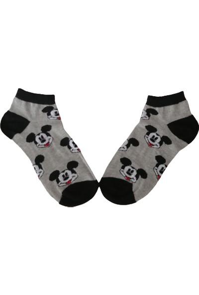 Altıgen Socks Mickey Mause Desenli Patik Çorap