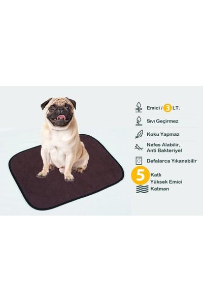 Ata Exclusive Fabrics Küçük Köpek Cinsleri Için 3 Adet 5 Katlı Yıkanabilir,emici,sıvı Geçirmez Köpek PEDİ(40X50 Cm)