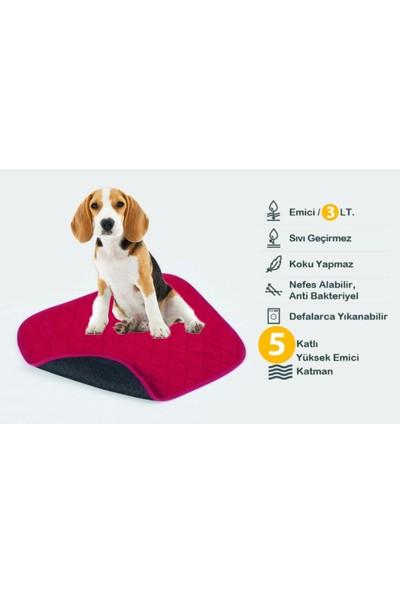 Ata Exclusive Fabrics Küçük Köpek Cinsleri Için 5 Katlı (2 Li Paket) Yıkanabilir, Emici ve Sıvı Geçirmez Köpek Çiş Pedi (40X50 Cm)