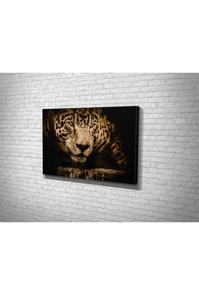 Tablo 360 Jaguar Kanvas Tablo