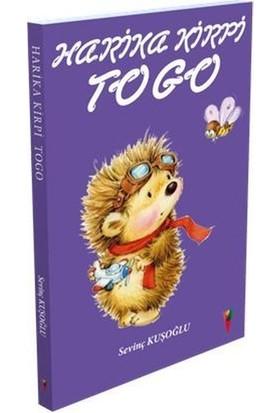 Harika Kirpi Togo - Sevinç Kuşoğlu