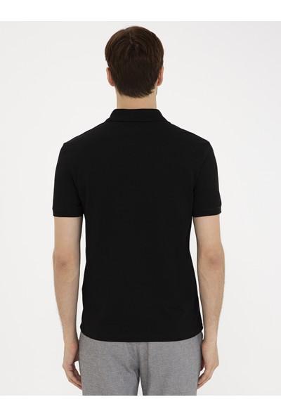 Cacharel Polo Yaka T-Shirt 50239479-VR046